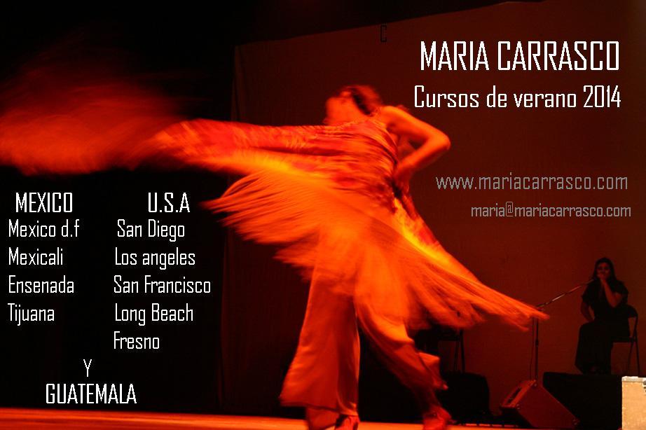 CARTEL VERANO 2014 Mexico y  Usa